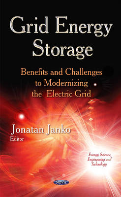 Grid Energy Storage: Benefits & Challenges to Modernizing  the Electric Grid (Hardback)