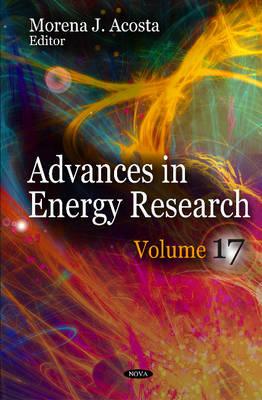 Advances in Energy Research: Volume 17 (Hardback)
