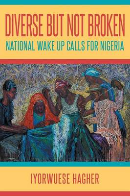 Diverse But Not Broken: National Wake Up Calls for Nigeria (Paperback)