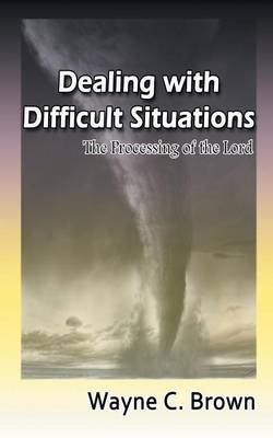 Dealing with Difficult Situations: The Processing of the Lord (Paperback)