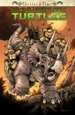 Teenage Mutant Ninja Turtles Turtles In Time (Paperback)