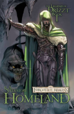 Dungeons & Dragons: The Legend of Drizzt: Homeland Volume 1 (Paperback)