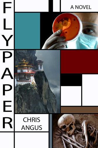 Flypaper: A Novel (Paperback)