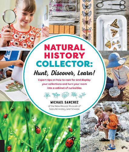 Natural History Collector: Hunt, Discover, Learn!: Expert Tips on how to care for and display your collections and turn your room into a cabinet of curiosities (Paperback)