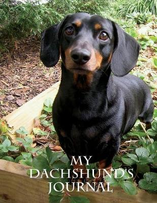My Dachshund's Journal: Building Memories One Day at a Time (Paperback)