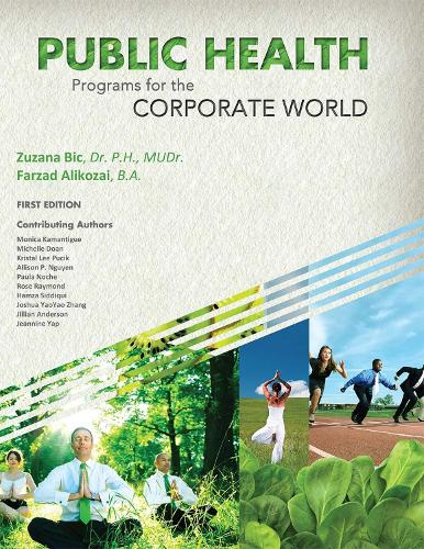 Public Health Programs for the Corporate World (Paperback)