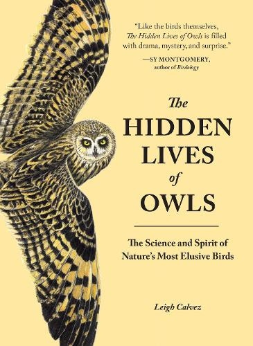 The Hidden Lives Of Owls (Paperback)