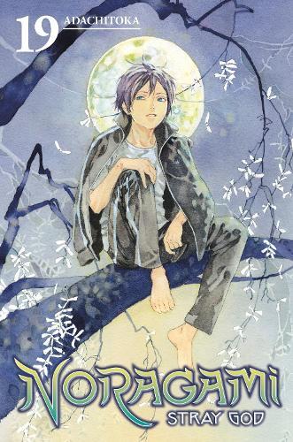 Noragami: Stray God 19 (Paperback)