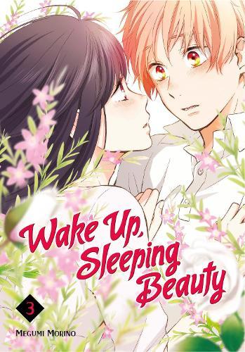 Wake Up, Sleeping Beauty 3 (Paperback)