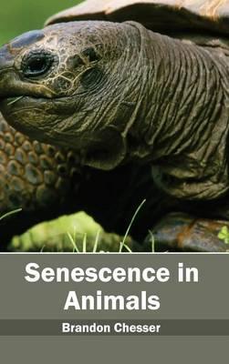 Senescence in Animals (Hardback)