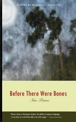 Before There Were Bones (Paperback)