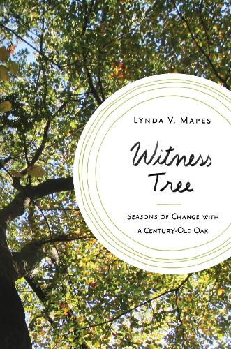 Witness Tree: Seasons of Change with a Century-Old Oak (Hardback)