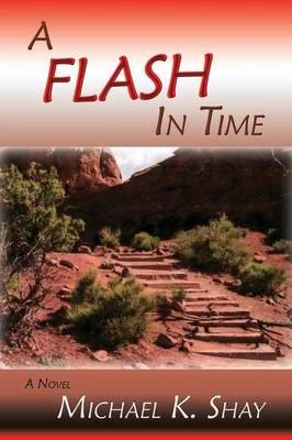 A Flash in Time (Paperback)