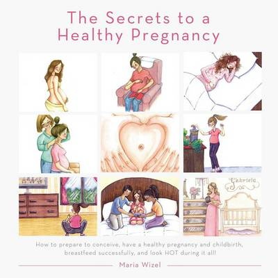 The Secrets to a Healthy Pregnancy (Paperback)