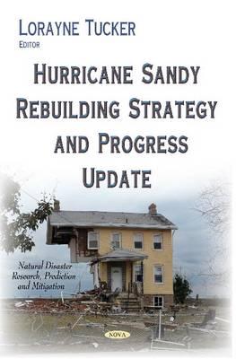 Hurricane Sandy Rebuilding Strategy & Progress Update (Hardback)