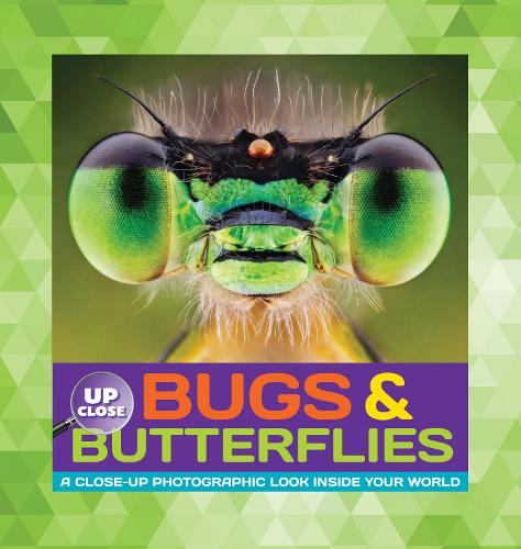 Bugs & Butterflies: A close-up photographic look inside your world - Up Close (Hardback)