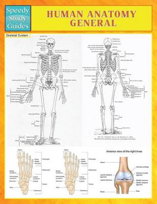 Human Anatomy General (Speedy Study Guides) (Paperback)