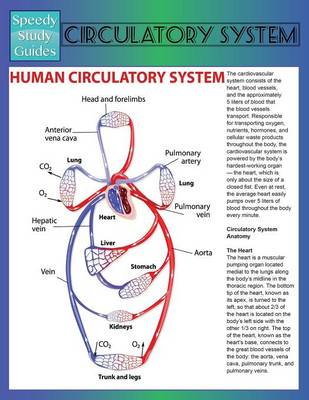 Circulatory System (Speedy Study Guide) (Paperback)
