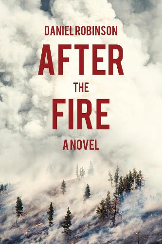 After the Fire: A Novel (Paperback)