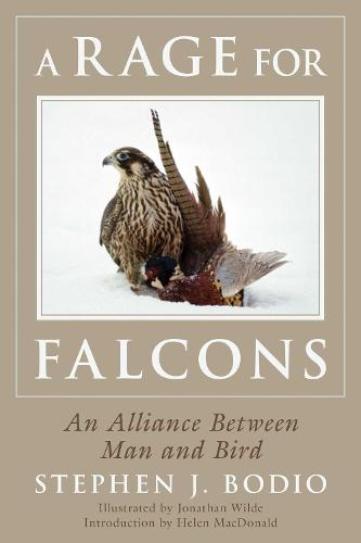 A Rage for Falcons: An Alliance Between Man and Bird (Paperback)