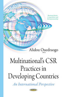 Multinationals CSR Practices in Developing Countries: An International Perspective (Paperback)