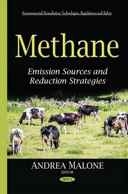 Methane: Emission Sources & Reduction Strategies (Hardback)