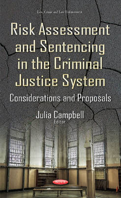 Risk Assessment & Sentencing in the Criminal Justice System: Considerations & Proposals (Hardback)