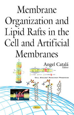 Membrane Organization & Lipid Rafts in the Cell & Artificial Membranes (Hardback)