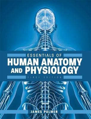 Essentials of Human Anatomy and Physiology (Paperback)