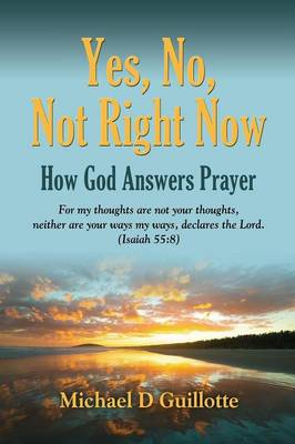 Yes, No, Not Right Now: How God Answers Prayer (Paperback)