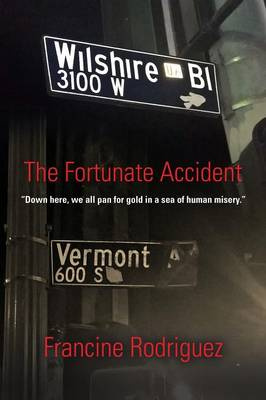 The Fortunate Accident (Paperback)