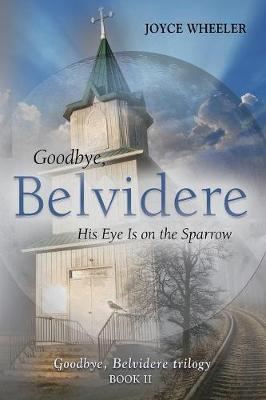 Goodbye, Belvidere: His Eye Is on the Sparrow (Paperback)