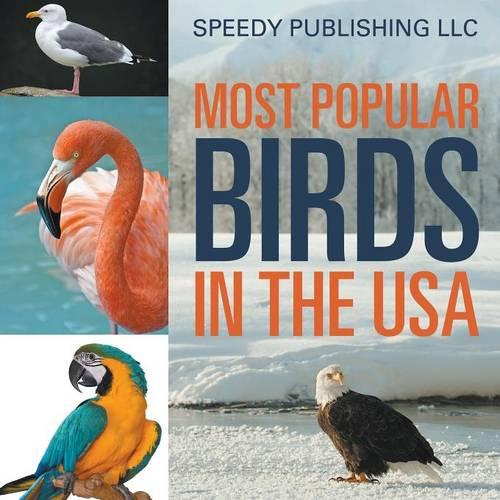 Most Popular Birds in the USA (Paperback)