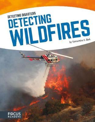 Detecting Diasaters: Detecting Wildfires (Hardback)