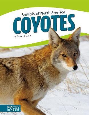 Animals of North America: Coyotes (Hardback)