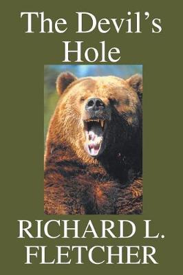 The Devil's Hole (Paperback)