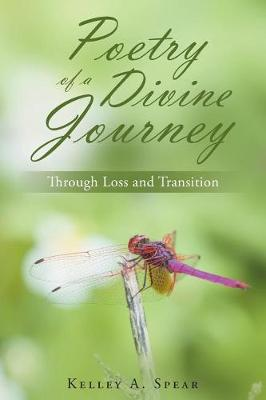 Poetry of a Divine Journey: Through Loss and Transition (Paperback)