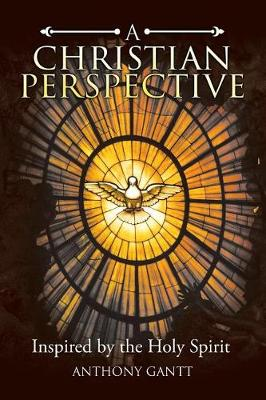 A Christian Perspective: Inspired by the Holy Spirit (Paperback)