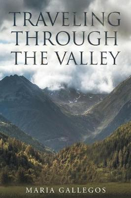 Traveling Through the Valley (Paperback)