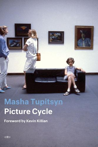 Picture Cycle - Semiotext(e) / Active Agents (Paperback)