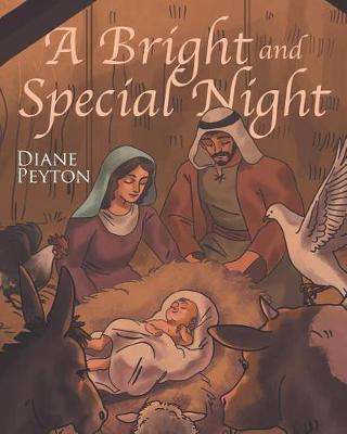 A Bright and Special Night (Paperback)