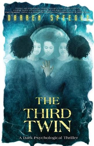 The Third Twin: A Dark Psychological Thriller (Paperback)