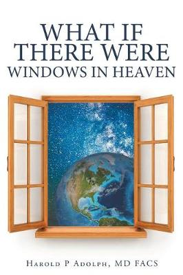 What If There Were Windows in Heaven (Paperback)