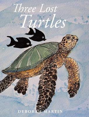 Three Lost Turtles (Hardback)