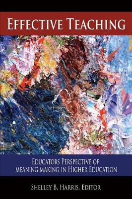Effective Teaching: Educators Perspective of Meaning Making in Higher Education (Paperback)