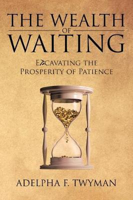 The Wealth of Waiting: Excavating the Prosperity of Patience (Paperback)