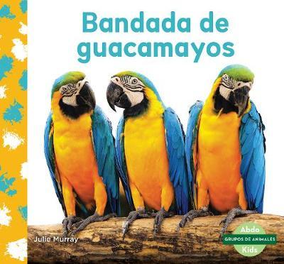 Bandada de guacamayos (Macaw Flock) (Paperback)