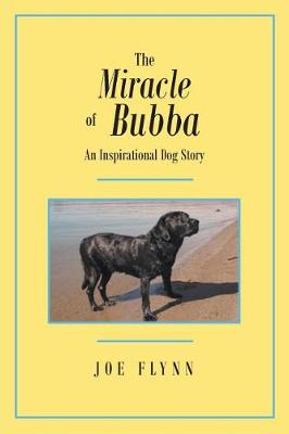 The Miracle of Bubba (Paperback)