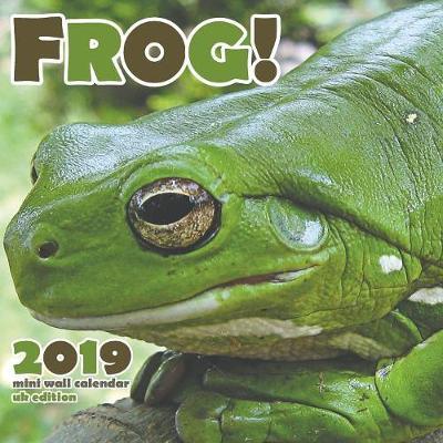 The Frog 2019 Calendar (UK Edition) (Paperback)