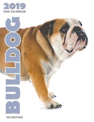 Bulldog 2019 Dog Calendar (UK Edition) (Paperback)